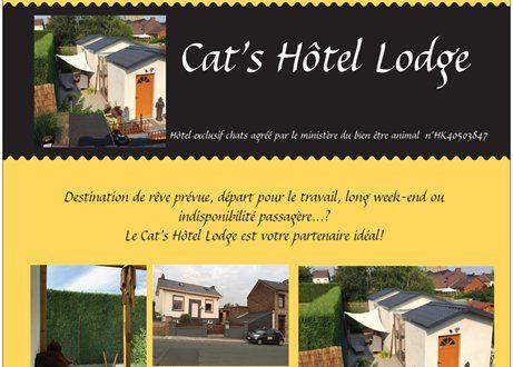 hôtel pour chats à vendre