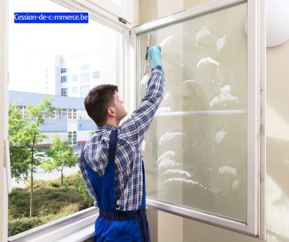 société lavage vitres