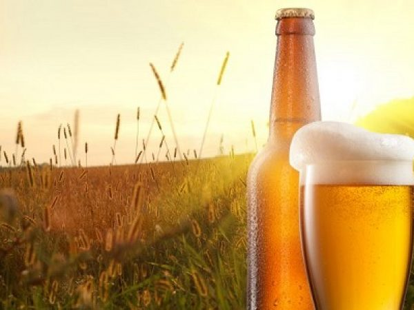 bigstock-Glass-of-beer-and-bottle-again-60718115-600x399-1